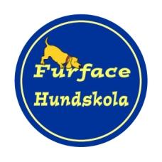 Furface logga